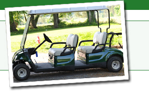 Golf cart parts for sale, including golf card seats, canopy tops, hitches, and cargo boxes